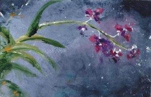Orchidsinthestorm